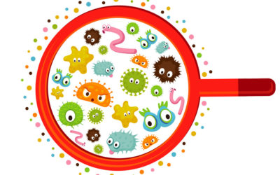 Biegunka pochodzenia wirusowego – szybki test do diagnostyki zakażeń rota-, adeno- i norowirusami już dostępny w laboratorium MEDICA