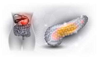 Trzustka – bezcenna fabryka enzymów i hormonów. Laboratoryjna diagnostyka schorzeń trzustki