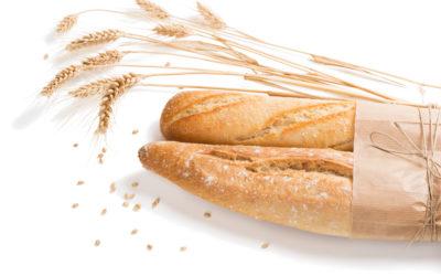 Celiakia, czyli życie bez glutenu… Nowoczesna diagnostyka laboratoryjna zgodna z rekomendacjami ESPGHANi ESsCD z 2019 roku