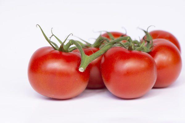 IgE sp. F25 Pomidor