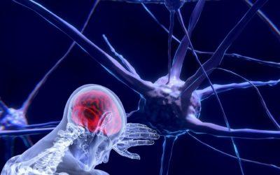 NEUROLOGICZNE ZESPOŁY PARANOWOTWOROWE (NZP) – przeciwciała onkoneuronalne jako system wczesnego ostrzegania